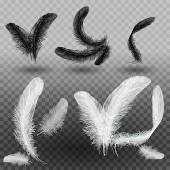 孤立した落下の白いふわふわ黒と白の羽毛のセット