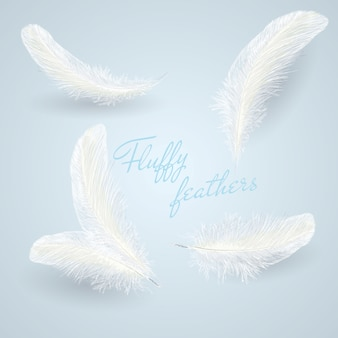 Набор изолированных падающих белых пушистых белых закрученных перьев
