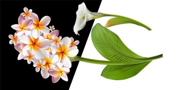 花のイラスト付きカード。エキゾチックな葉が白い背景で隔離の花の花束。