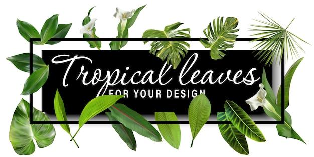 熱帯の葉のバナー