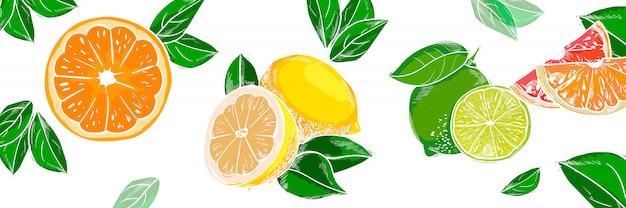 手描きのフルーツの背景。ヴィンテージ色チョーク汚れたスケッチ。柑橘系のチョークの図
