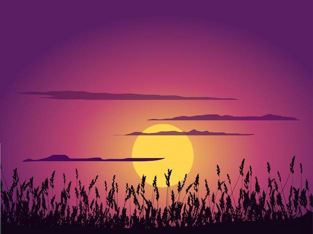 Силуэт травы в лунном свете