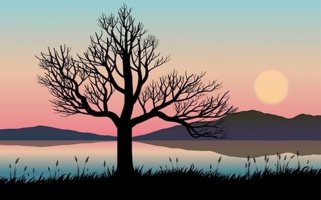 木と川のシルエットと日没の風景