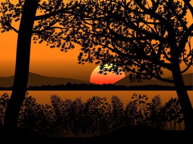 日没時の木のシルエット