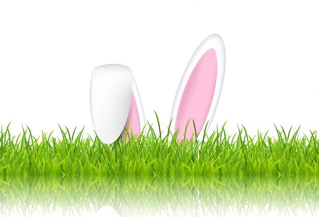 芝生のイースターウサギの耳
