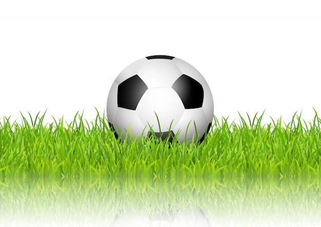 白い背景に芝生のサッカーボール