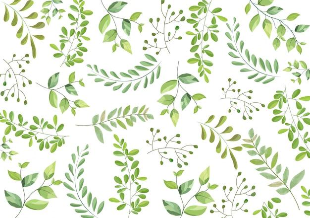Бесшовные ветвей зеленых листьев