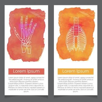 人間の手や脊椎システム水彩カードテンプレート