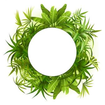 熱帯の植物や葉の花輪フレーム。