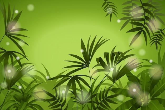 熱帯の風景。