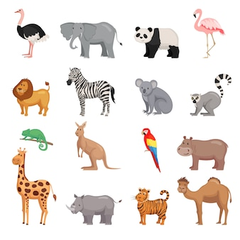 動物園の動物のセット