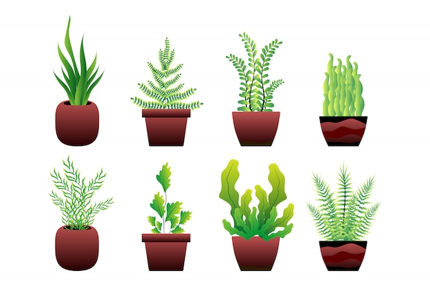 緑の植木鉢のセット