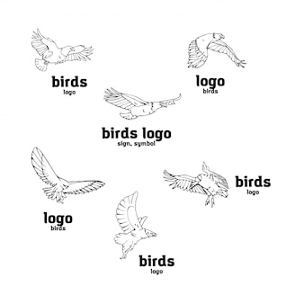手書きの鉛筆のグラフィック。鳥の獲物セット。
