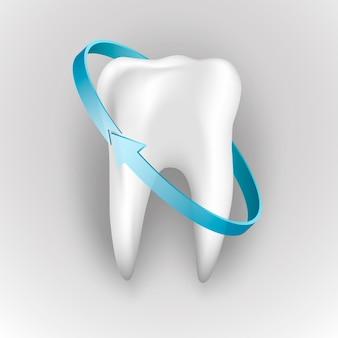 人間の歯の保護