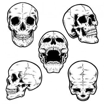Пакет черепа