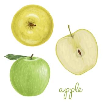 ジューシー手描きリンゴ