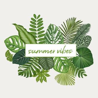 夏のバイブレーション。熱帯の葉のイラスト