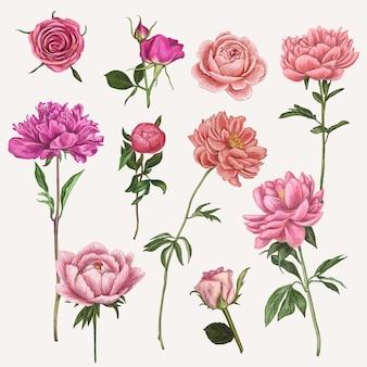 手描きのベクターの花のイラスト