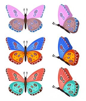 Бабочки, изолированные на белом