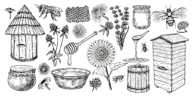 Пчеловодство эскиз значок набор. медовый винтажный набор с пчелиный улей, стеклянная банка и ложка, пчелы, медоносные цветы. рука рисунок пасеки объектов. иллюстрации.