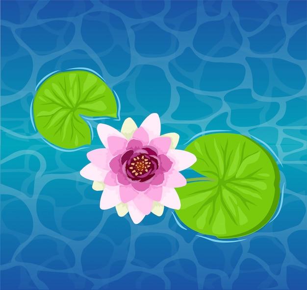 水のクローズアップの美しい蓮の花。美しいリリーロータス。ユリまたはハスとユリのイラスト。