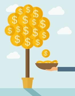 木に成長しているお金。