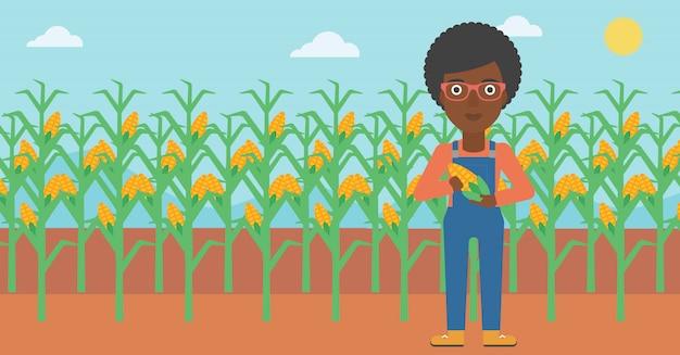 Фермер держит кукурузу