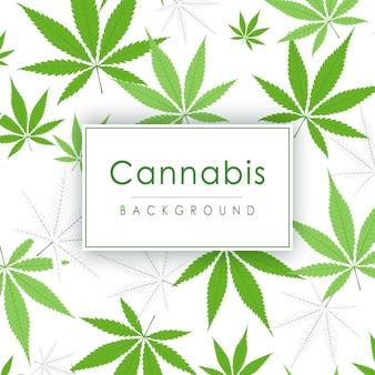 マリファナの葉。大麻植物の緑の背景。ガンジャの密な植生。