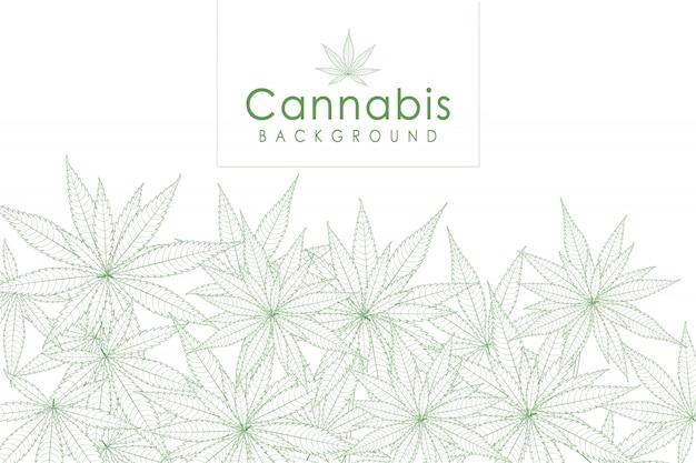 緑の大麻葉薬マリファナハーブ背景。