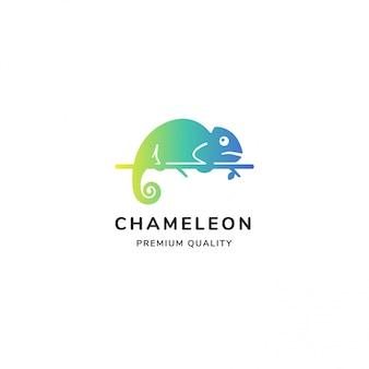 白で隔離される明るいカラフルなカメレオンのロゴ