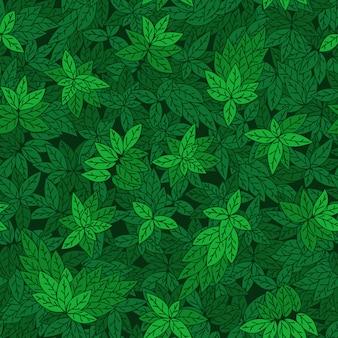Бесшовный фон с зелеными ветвями деревьев.