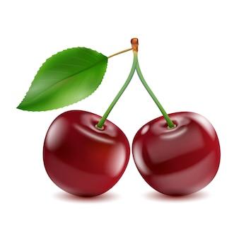 Две спелые красные ягоды вишни с листом