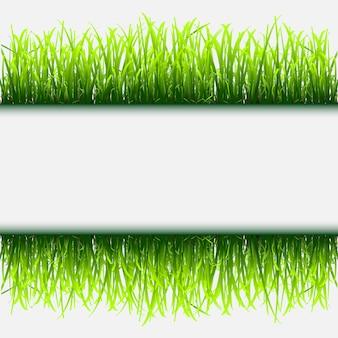 緑の草のフレーム
