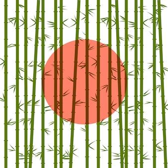赤い太陽の竹