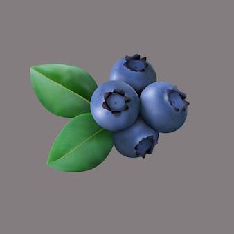 分離した葉とブルーベリー