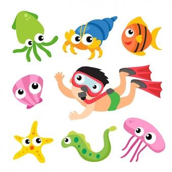 Морская коллекция животных