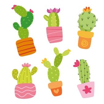 Коллекция кактусов цветное