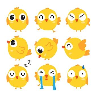 Дизайн коллекции птенцов