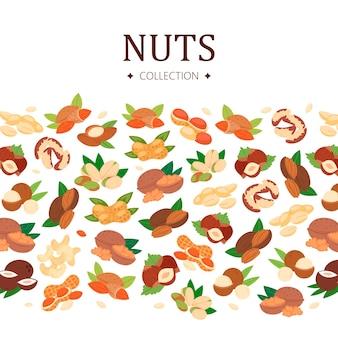 Коллекция орехов в плоском стиле