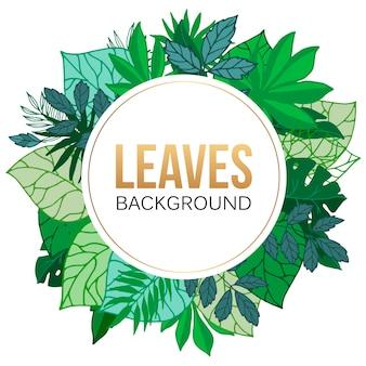 熱帯のヤシの葉ラウンドフレームイラスト。ヤシの葉と木と緑のエキゾチックな葉。