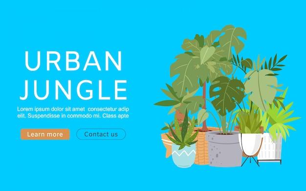 Городские джунгли веб-баннер. иллюстрация с модным декором дома, тропические растения в горшках. комнатные растения, экзотические банановые и пальмовые листья, городские джунгли.