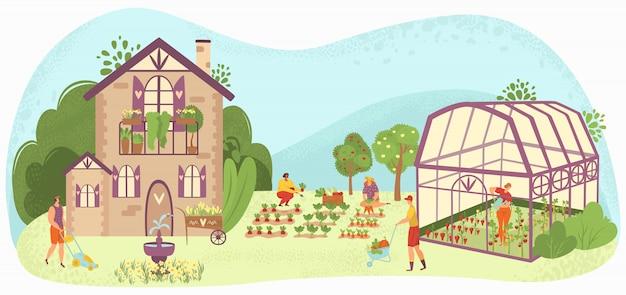 Люди ухода за садом садовничая около загородного дома, заботя для заводов в иллюстрации завода-овоща и овощей садовников.