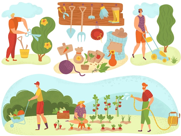 園芸用具を持つ人々園芸、夏の収穫漫画イラストで植物の緑の野菜に水をまきます。