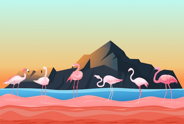 動物のフラミンゴの場所、自然の風景フラットベクトルイラスト。美しい家禽は浅瀬の川、岩山の空間に立ちます。