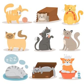 かわいい猫のキャラクターの異なるポーズベクトルを設定します。