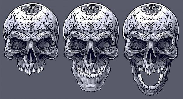 詳細なグラフィックの黒と白の人間の頭蓋骨セット