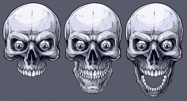 Набор подробных графических черно-белых человеческих черепов