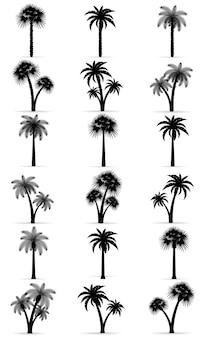 ヤシの木黒アウトラインシルエットベクトルイラスト