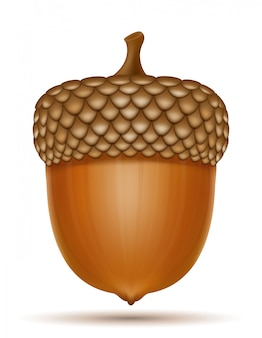Осенние дубовые желуди векторная иллюстрация