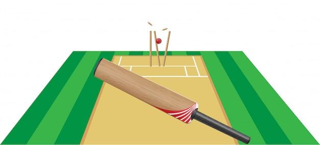クリケットのベクトル図